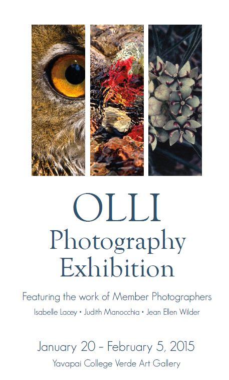 Olli photo exhibit 2