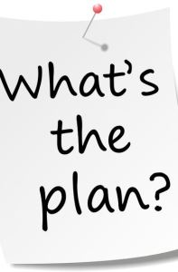 What is the plan